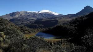 Centro_de_visitantes_el_cisne_Luis_Alfonso_Cano