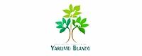 actividades_yblogo